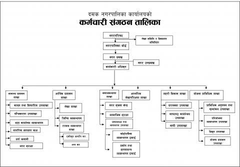 Organizational Structure of Damak Municipality